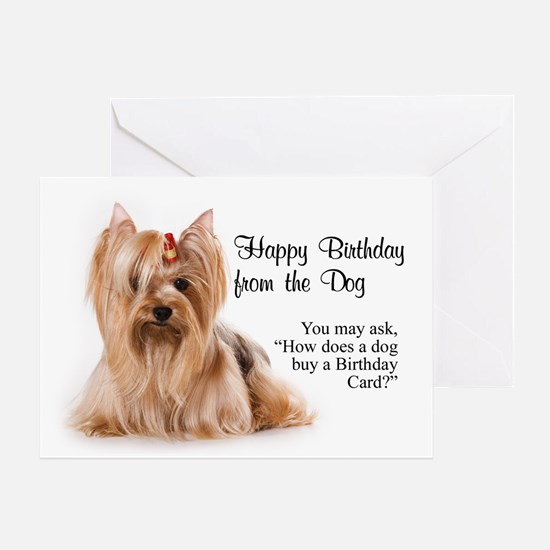 Happy Birthday from the Yorkie