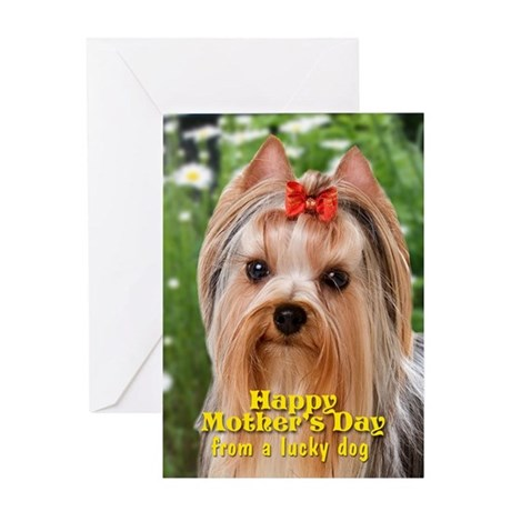 Yorkie Mother's Day Card