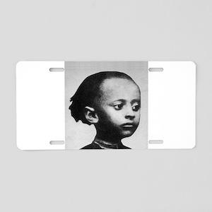 H.I.M. 21 Aluminum License Plate
