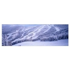 Steamboat Ski Area in the Rocky Mountains Steamboa Poster