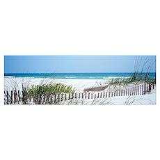 Fence Beach AL Poster