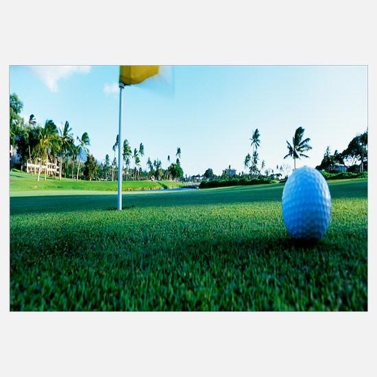 Close Up Golf Ball and Hole Hawaii