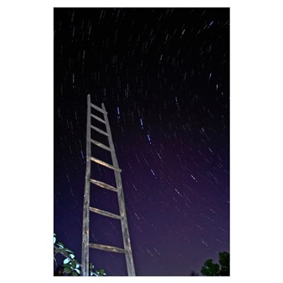 Star trails framworked by a wooden ladder Poster