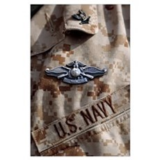 Fleet Marine Force Warfare device pin Poster