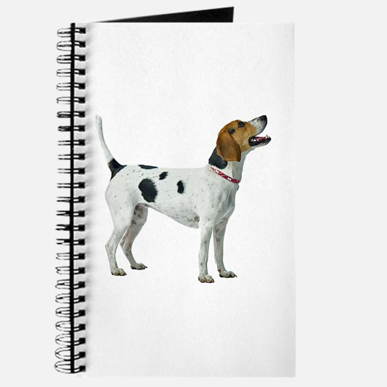 Foxhound Journal