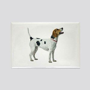 Foxhound Rectangle Magnet