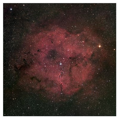 The large IC 1396 emission nebula complex Poster