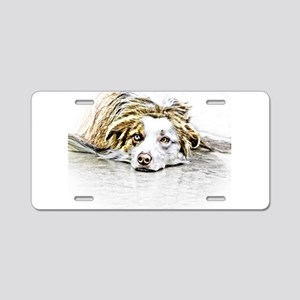 AUSTRALIAN SHEPHERD - DOG Aluminum License Plate