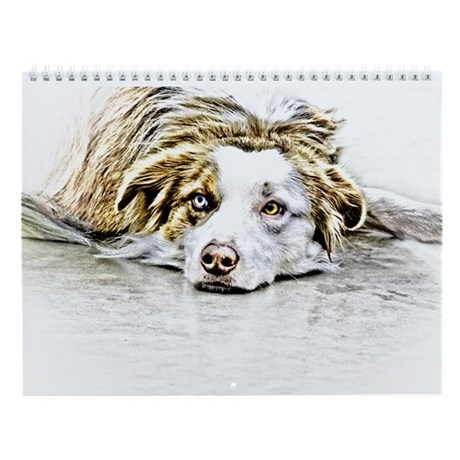 AUSTRALIAN SHEPHERD - DOG Wall Calendar