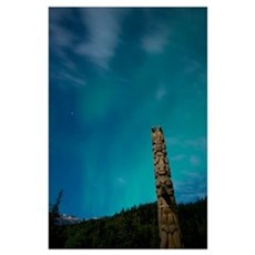 Aurora above totem pole Poster