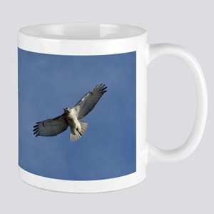 Juvenile Red-tailed Hawk Mug