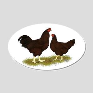 Buckeye Chickens 22x14 Oval Wall Peel