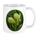 Cobra/Darlingtonia/Pitcher Plant Flower Mug