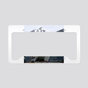 Cruise Alaska License Plate Holder