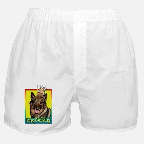 Birthday Cupcake - Vallhund Boxer Shorts