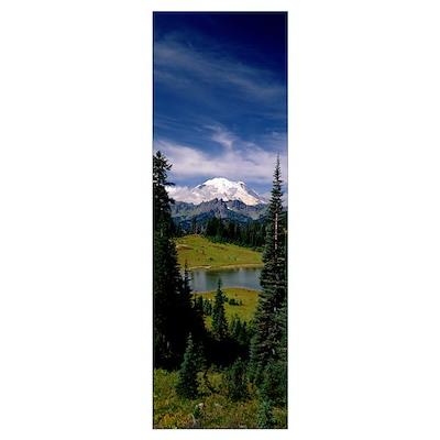 Mt Rainier WA Poster