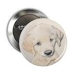 Golden Retriever Puppy 2.25