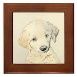 Golden Retriever Puppy Framed Tile