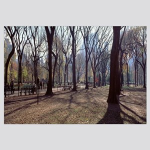 New York State, New York City, Central Park, Peopl