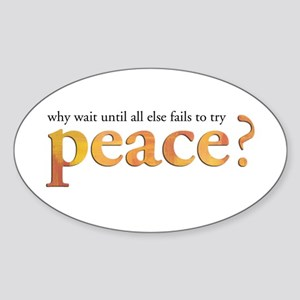 Why Wait Until All Else Fails Oval Sticker
