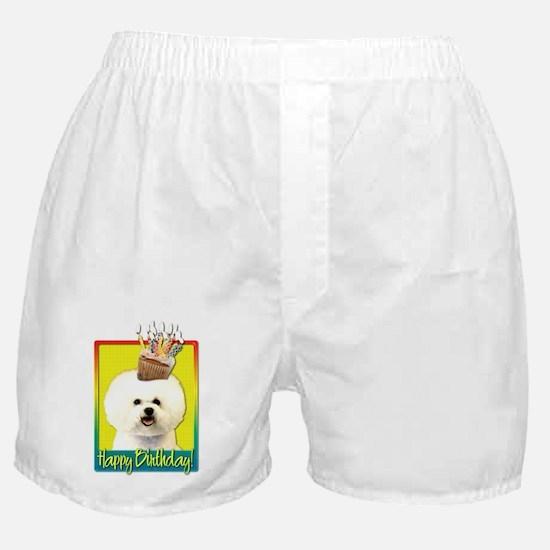 Birthday Cupcake - Bichon Boxer Shorts