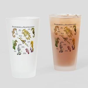 Seahorses & Seadragons Drinking Glass