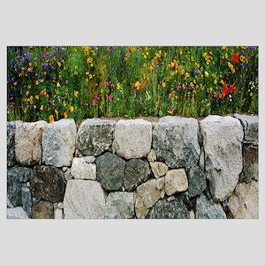 Wildflowers growing near a stone wall, Fidalgo Isl