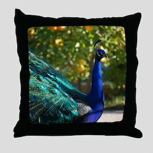 Peacock 5560 - Throw Pillow