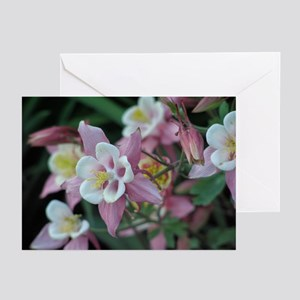 Columbines in Bloom Greeting Cards (Pk of 10)