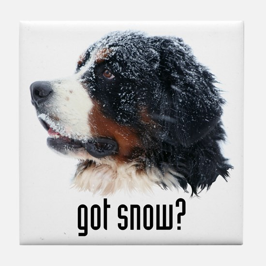 got snow? Tile Coaster