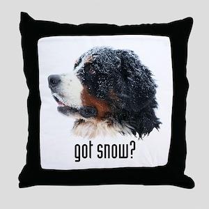 got snow? Throw Pillow