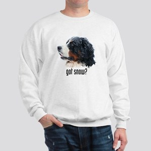 got snow? Sweatshirt