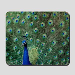 Peacock 5427 - Mousepad