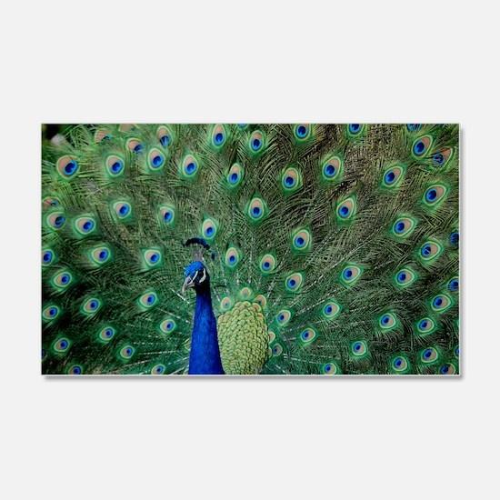 Peacock 5427 - 22x14 Wall Peel