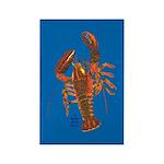 Lobster Rectangle Magnet (10 pack)