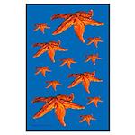 Starfish Large Poster