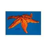 Starfish Rectangle Magnet (100 pack)