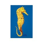 Seahorse Rectangle Magnet (100 pack)