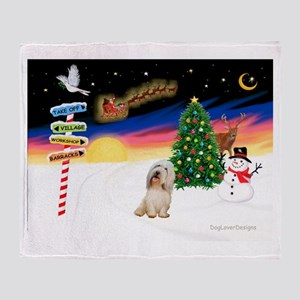 XmasSigns/PBGV #2 Throw Blanket