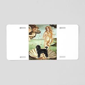 Venus / PWD (#2) Aluminum License Plate