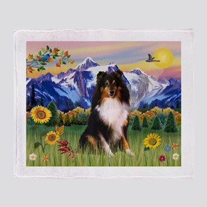 Mt. Country & Tri Shetland Sheepdog Stadium Blank