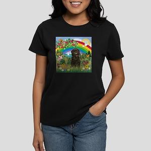 Rainbow & Affenpinscher Women's Dark T-Shirt
