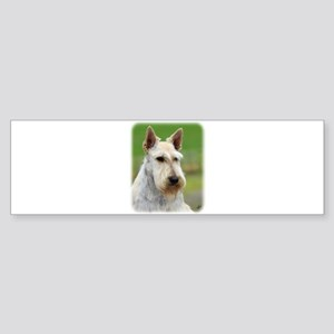 Scottish Terrier AA063D-101 Sticker (Bumper)