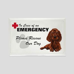 Please Rescue Irish Setter Rectangle Magnet