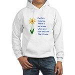 Faith is Knowing V3 Hooded Sweatshirt