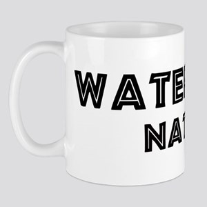 Waterbury Native Mug