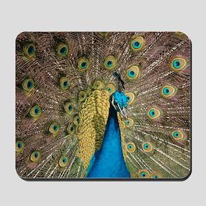 Peacock 6286 - Mousepad