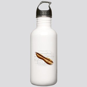 Mountain Dulcimer Stainless Water Bottle 1.0L
