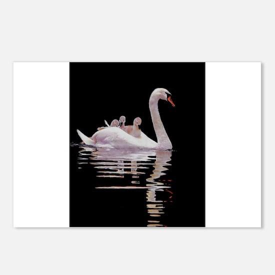Cute Swans Postcards (Package of 8)
