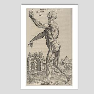 Side Man Postcards (Package of 8)